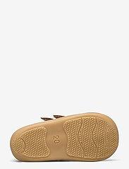 ANGULUS - Boots - flat - with velcro - lauflernschuhe - 1545 cognac - 4