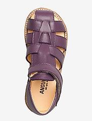 ANGULUS - Sandals - flat - closed toe -  - sandały z paskiem - 1568 lavender - 3