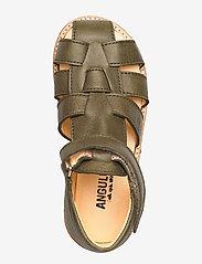 ANGULUS - Baby sandal - sandals - 2638 khaki - 3