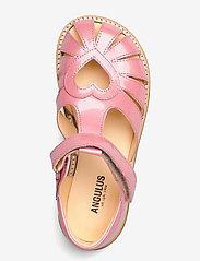 ANGULUS - Sandals - flat - closed toe -  - strap sandals - 2389 rose pink - 3