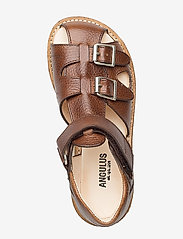 ANGULUS - Sandals - flat - closed toe -  - sandały z paskiem - 2509 cognac - 3