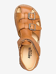 ANGULUS - Sandal with two buckles in front - sandals - 2621 cognac - 3