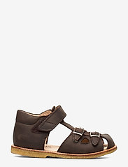 ANGULUS - Sandals - flat - sandals - 1660 dark brown - 1