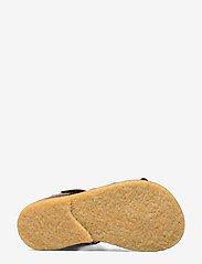 ANGULUS - Sandals - flat - sandals - 1660 dark brown - 4