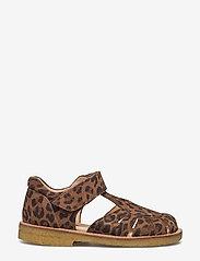 ANGULUS - Sandals - flat - closed toe -  - riemchensandalen - 2164 leopard - 1