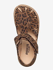 ANGULUS - Sandals - flat - closed toe -  - riemchensandalen - 2164 leopard - 3