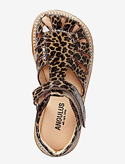 ANGULUS - Sandals - flat - closed toe -  - sandały - 2308 brown leopard - 2