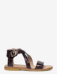 ANGULUS - Sandals - flat - open toe - op - flache sandalen - 1672 brown croco - 1