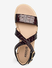 ANGULUS - Sandals - flat - open toe - op - flache sandalen - 1672 brown croco - 3