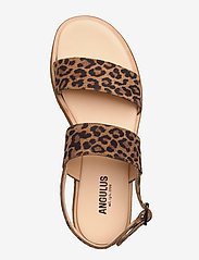 ANGULUS - 5452 - sandales - 2164 leopard - 3