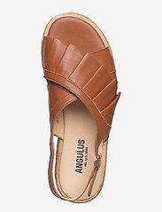 ANGULUS - Sandals - flat - flache sandalen - 1431 cognac - 3