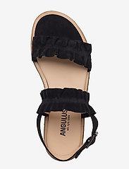 ANGULUS - Sandals - flat - open toe - op - platte sandalen - 1163 black - 3