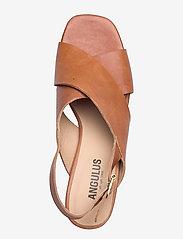 ANGULUS - Sandals - Block heels - højhælede sandaler - 1789 tan - 3