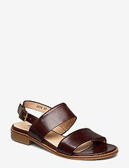 ANGULUS - Sandals - flat - platta sandaler - 1836 dark brown - 0