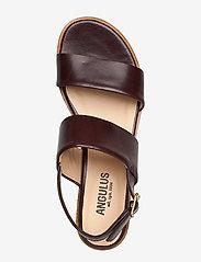 ANGULUS - Sandals - flat - flache sandalen - 1836 dark brown - 3