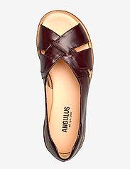 ANGULUS - Sandals - flat - open toe - op - platta sandaler - 1836/002 dark brown/dark brown - 3