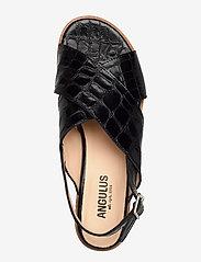 ANGULUS - Sandals - flat - flache sandalen - 1674 black croco - 3