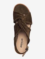 ANGULUS - Sandals - flat - open toe - op - flache sandalen - 2214 dark olive - 3