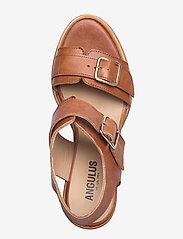 ANGULUS - Sandals - wedge - wedges - 1789 tan - 3