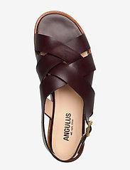 ANGULUS - Sandals - flat - open toe - op - flache sandalen - 1836 dark brown - 3