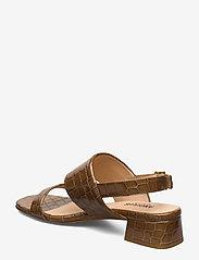 ANGULUS - Sandals - Block heels - højhælede sandaler - 1671 tan krokodille - 2