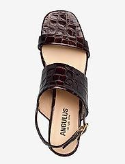 ANGULUS - Sandals - Block heels - sandalen met hak - 1672 brown croco - 3