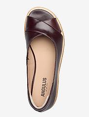 ANGULUS - Sandals - flat - open toe - clo - flache sandalen - 1836/002 dark brown/dark brown - 3