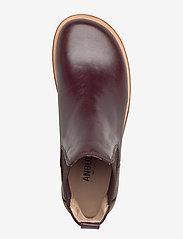ANGULUS - Booties-flat - with elastic - chelsea boots - 1836/046 dark brown/d. brown - 3