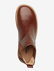 ANGULUS - Booties-flat - with elastic - chelsea støvler - 1837/040 brown/ brown - 3