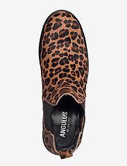 ANGULUS - Chelsea boot - chelsea støvler - 1110/019 leopard/elastic - 3