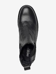 ANGULUS - Chelsea boot - flate ankelstøvletter - 1933/019 black/black - 1