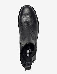 ANGULUS - Chelsea boot - lage hakken - 1933/019 black/black - 1