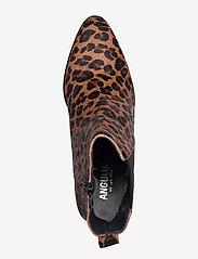 ANGULUS - Booties - Block heel - with elas - ankelstøvler med hæl - 1110/019 leopard/elastic - 3