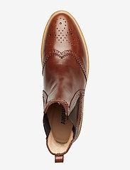 ANGULUS - Booties - flat - with elastic - chelsea støvler - 1837/002 brown/dark brown - 3