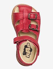 Arauto RAP - Hand Made Sandal - sandały z paskiem - 84-chilli - 3