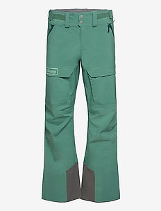 Myrkdalen V2 3L Pnt - skiing pants - forestfrost/lt forestfrost