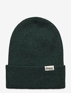 Allround Beanie - kapelusze - forestfrost