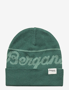 Bergans Logo Youth Beanie - hats - forestfrost/lt forestfrost