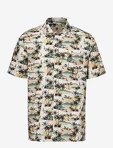 Jim - kortærmede skjorter - 540 cocoon