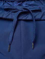 BIDI BADU - Henry 2.0 Tech Shorts - training korte broek - dark blue - 3
