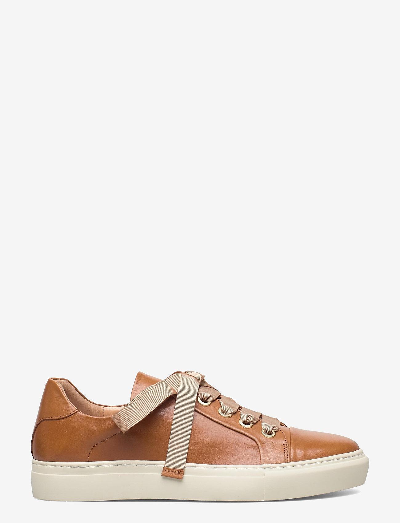Billi Bi - Sport 24825 - låga sneakers - cuoio guanto calf  84 - 1
