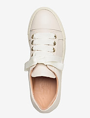 Billi Bi - Sport 24825 - låga sneakers - off white latte calf 82 - 3