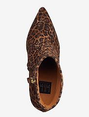Billi Bi - Booties 3365 - ankelstøvler med hæl - cuoio leopardo suede 562 - 3