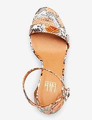 Billi Bi - Sandals 4693 - høyhælte sandaler - orange 944 snake 37 - 3