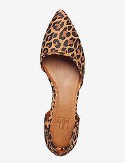 Billi Bi - Shoes 8660 - ballerinasko - leopardo suede 542 - 3
