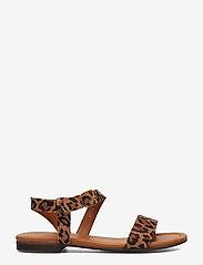 Billi Bi - Sandals 8714 - flate sandaler - leopardo suede 542 - 1