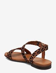 Billi Bi - Sandals 8714 - flate sandaler - leopardo suede 542 - 2