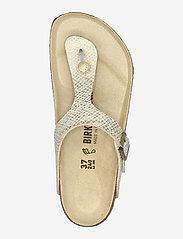Birkenstock - Gizeh - flade sandaler - shiny python egsehell/gold - 3