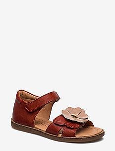 Sandals - sandals - cotto