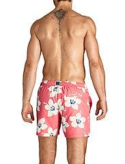 Björn Borg - LOOSE SHORTS SYLVESTER SYLVESTER - shorts de bain - bb graphic floral sunkist cora - 3